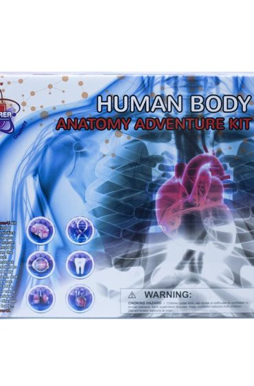 Human Body Anatomy Adventure Kit